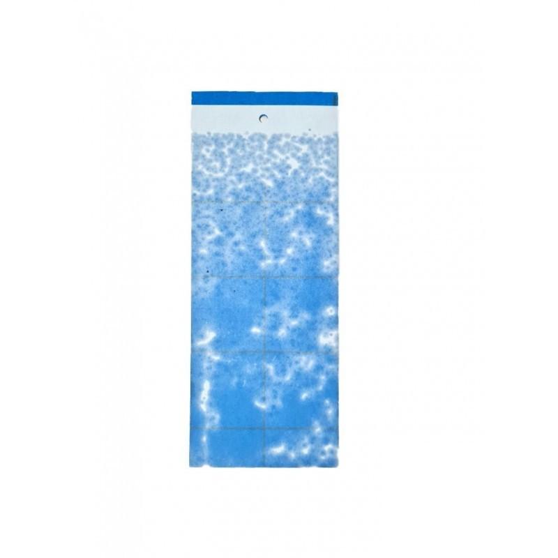 Zestaw niebieskich tablic lepowych